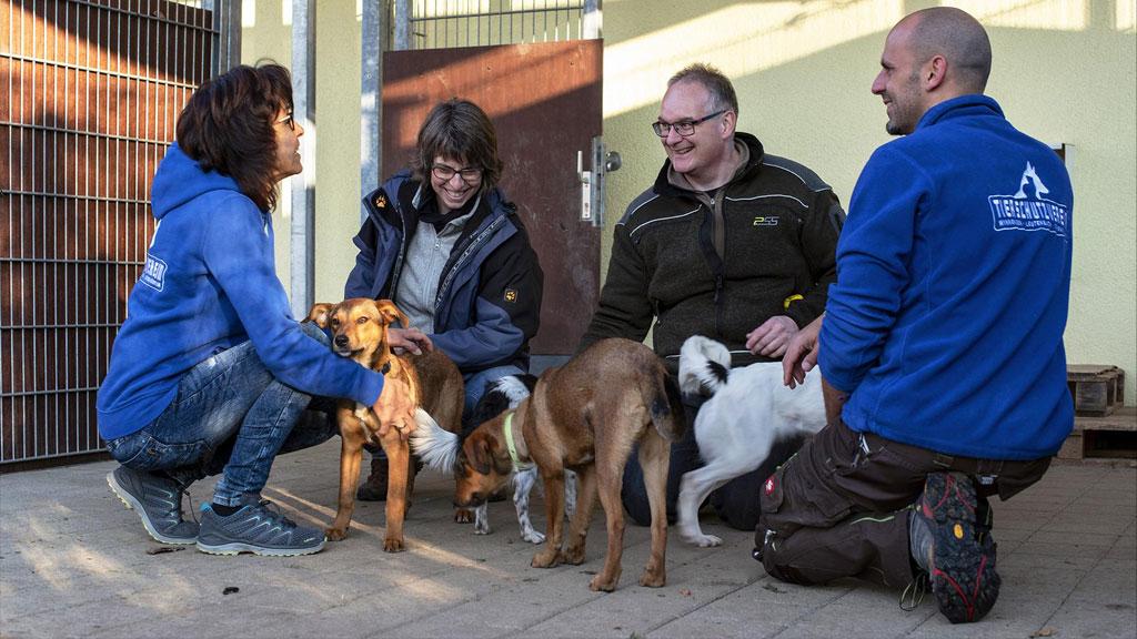 """""""Erst der Kurs und dann der Hund"""" – Kombiangebot der VHS Unteres Remstal e.V., Waiblingen und dem Tierheim Winnenden für angehende Hundehalter"""""""